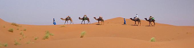 Treks Sahara